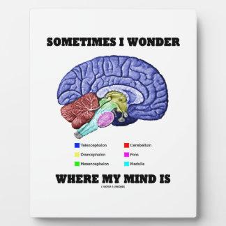 Sometimes I Wonder Where My Mind Is (Brain Humor) Plaque