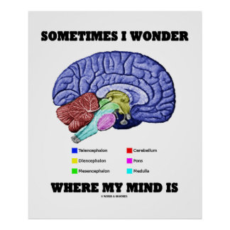 Sometimes I Wonder Where My Mind Is (Brain Humor) Poster