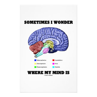 Sometimes I Wonder Where My Mind Is (Brain Humor) Stationery