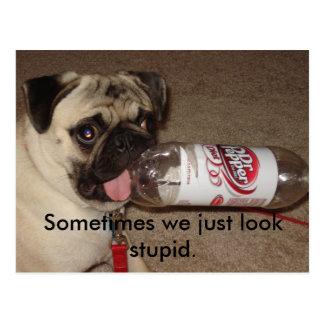 Sometimes we just look stupid. postcards