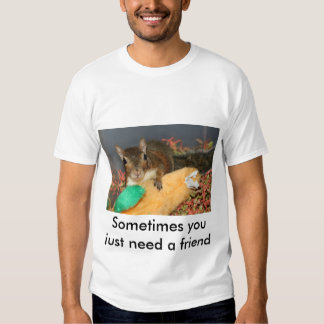 Sometimes you just need a friend t shirt