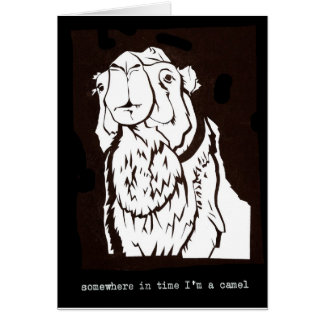 Somewhere in time I am a camel Cards