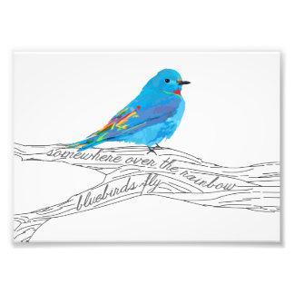Somewhere over the Rainbow Bluebird Print