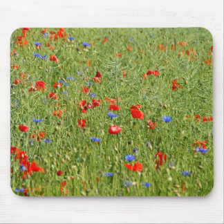 Sommerfeld with red and blue flowers mouse pad