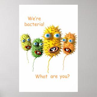 Somos bacterias impresiones
