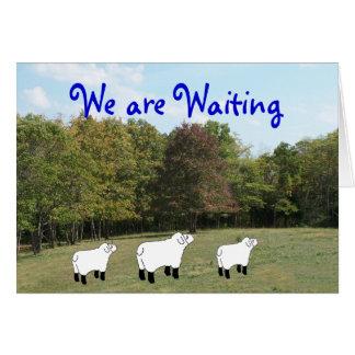 Somos Esperar-personalizar cualquier ocasión Tarjeta De Felicitación
