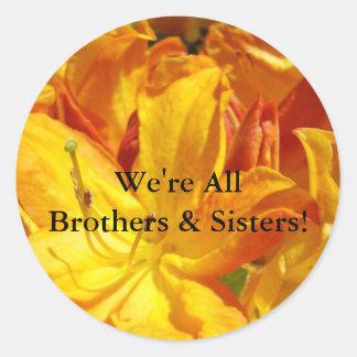 ¡Somos todos los hermanos y hermanas! pegatinas Pegatina Redonda