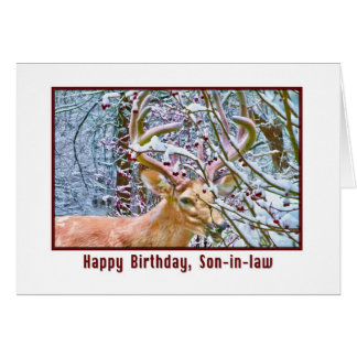 Son-in-law's Birthday Card with Deer