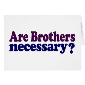Son los hermanos necesarios tarjetón
