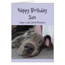 Son Social Distancing Birthday Great Dane Dog