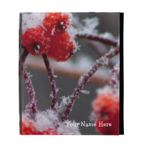 SONB Snow on Berries; Customizable iPad Cases