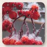 SONB Snow on Berries; Customizable Coasters