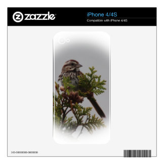 Song Bird iPhone 4S Skins