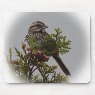 Song Bird Mouse Pad