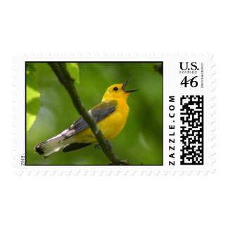 Song Bird Stamps