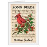 Song Birds Northern Cardinal Card