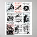 Song Birds Sheet Music Vintage Ephemera Art Poster
