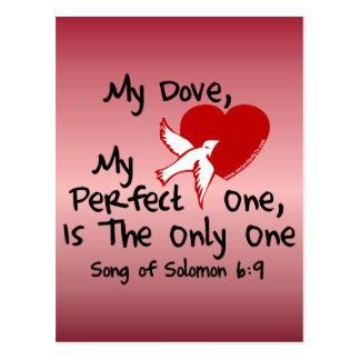 Song of Solomon 6:9 Postcard