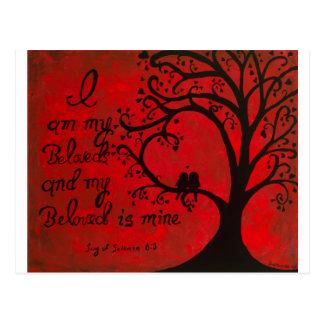 Song of Solomon Postcard
