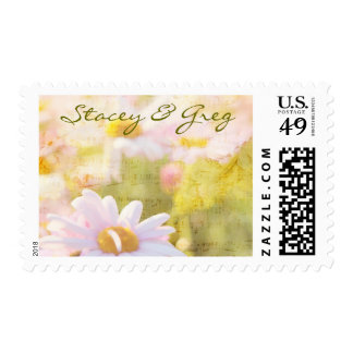 Song of Spring Lovely Pale Pink Daisies Asters Postage