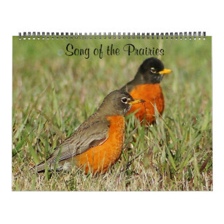 Song of the Prairies 2014 Calendar