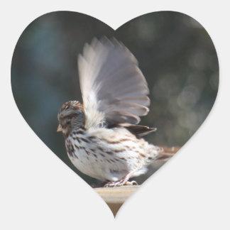 Song sparrow photo on Custom Heart Sticker