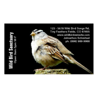 Song Sparrow Photograph Bird Biz Double-Sided Standard Business Cards (Pack Of 100)
