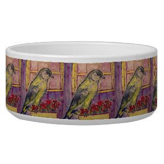 songbird in window box sketch bowl