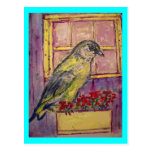 songbird in window box sketch postcard