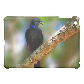 Songbird Starling blue bird iPad Mini Covers