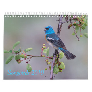 Songbirds 2019 Calendar
