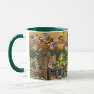 Songbirds of the West Mug