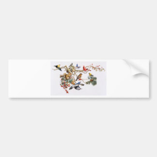 Songbirds on A Wing with Squirrel Car Bumper Sticker