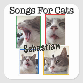 Songs For Cats - Sebastian Decal Square Sticker