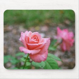 Sonia rose mousepad