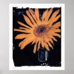 Sonnenblume, impresión anaranjada del girasol poster