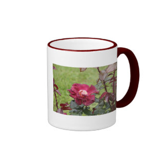 Sonnet # 18 by William Shakespeare Coffee Mugs
