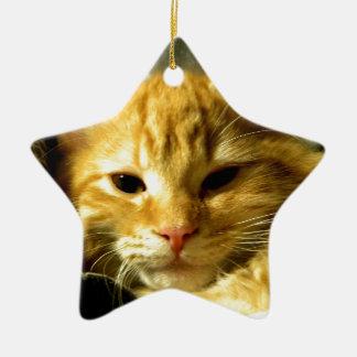 Soñoliento perfore ornamentos de navidad