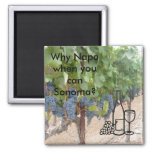 Sonoma Valley wine lovers 2 Inch Square Magnet