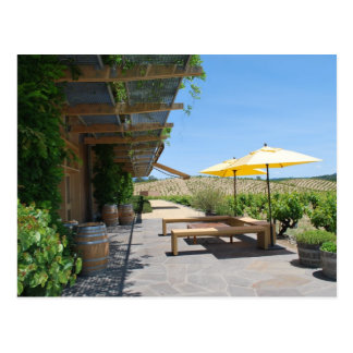 Sonoma Winery Postcard