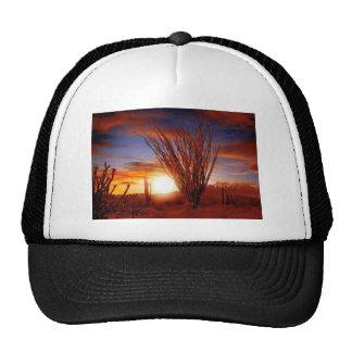 Sonora Desert, Arizona Mesh Hat