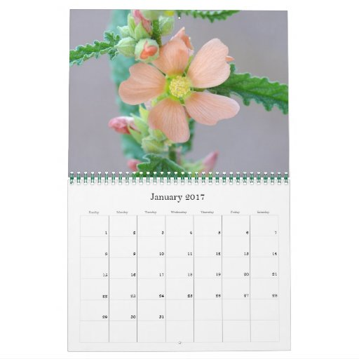 Sonoran Desert Calendar for 2008