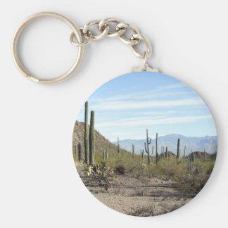 Sonoran desert scene 02 keychain