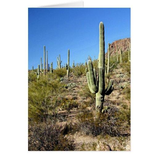Sonoran Desert scene 03 Greeting Card