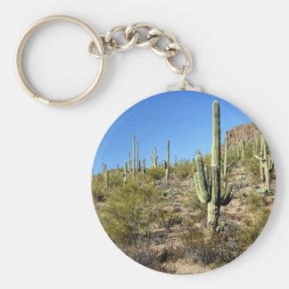 Sonoran Desert scene 03 Keychains