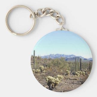 Sonoran Desert scene 04 Key Chain