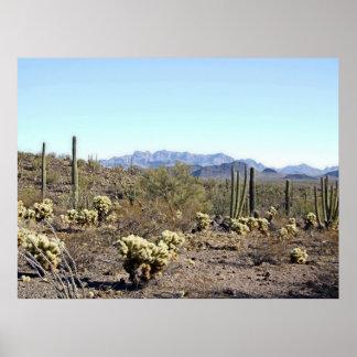 Sonoran Desert Scene 04 poster