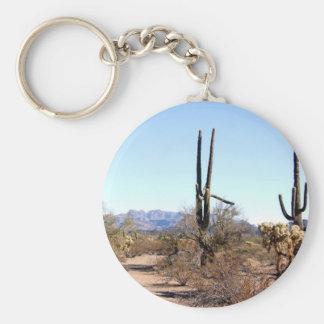 Sonoran Desert Scene 06 Key Chains