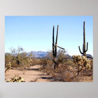 Sonoran Desert Scene 06 poster