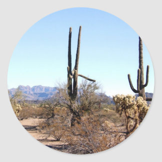 Sonoran Desert Scene 06 Round Stickers